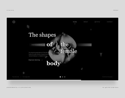The Shapes Of The Female Body - UI Design Exploration