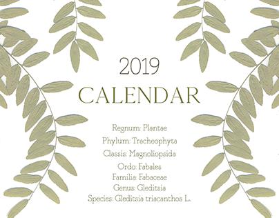 Calendar Plantae