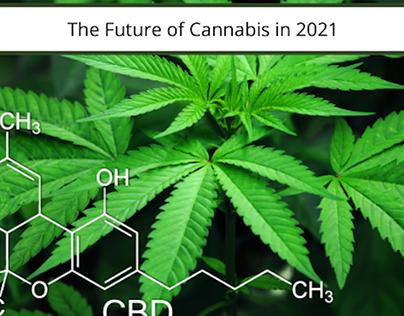 The Future of Cannabis in 2021 | Cameron Forni