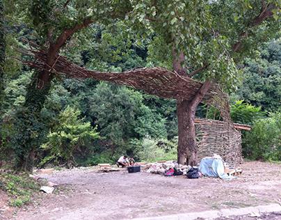 Back to the roots (EASA-Symbioza, Bulgaria 2014)