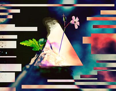 . : Canopy (Glitch Art)