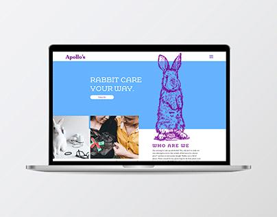 Apollo's Rabbit Care