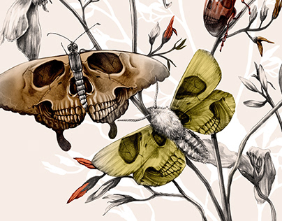 The Insect Apocalypse