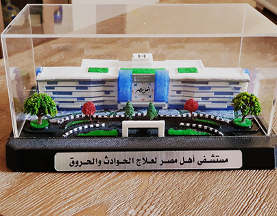 hospital model 3D printed