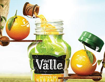 Del Valle sabores caseros.