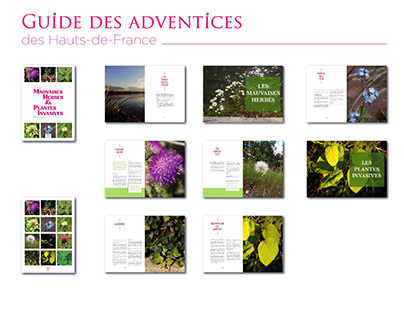 Guide des adventices