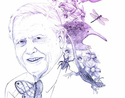 David Attenborough's portrait