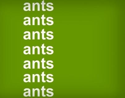Animation - Kinetic Typography