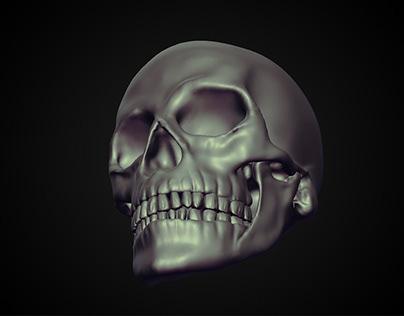3D Skull High Poly