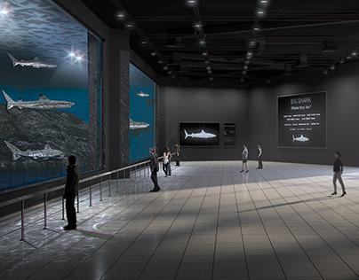 3D Renderings for the Public Aquarium.