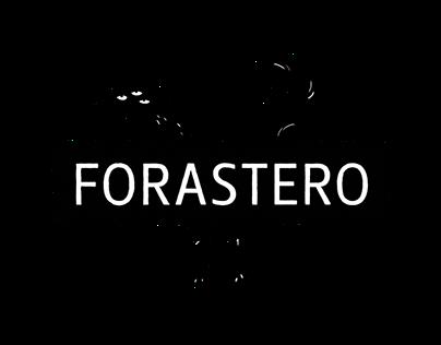 Forastero