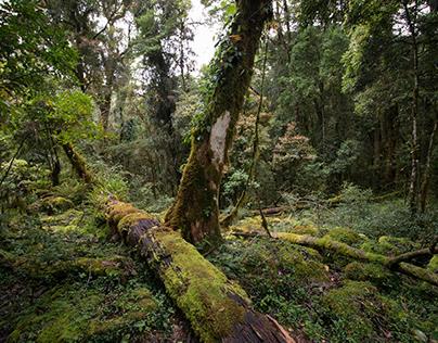 Dokumentasi Pendakian Gunung Bawakaraeng