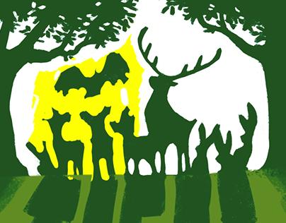 Tiere allein im Wald - Behind the Scenes
