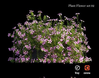 Plant Flower set 02