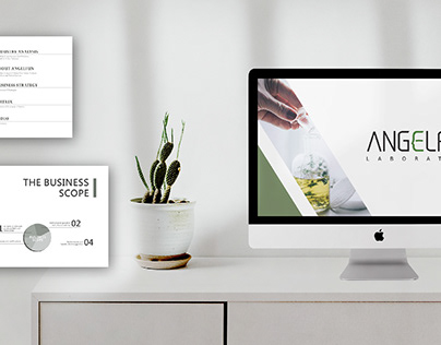 Angelfun Presentation Design