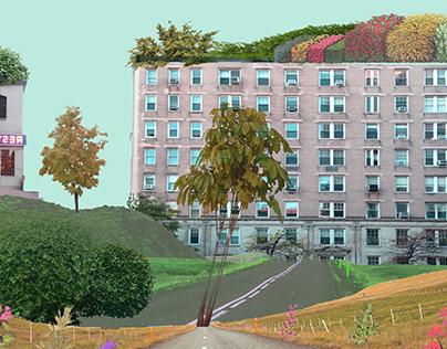 Apartment Buildings Built Collage