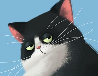 Spicchio the cat