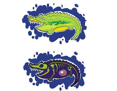 See through Crocodile