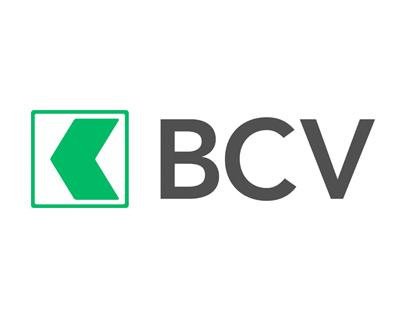 BCV Investors iPad Application