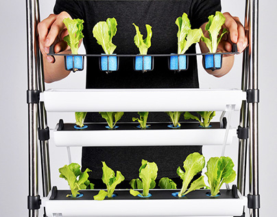 Product │ 耕耕好食 Indoor Agriculture