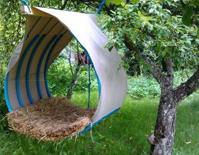 Nest - tree house