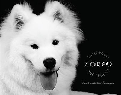 """Little Polar """"Zorro"""" The Legend"""