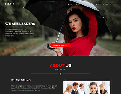 Salimo - One Page Responsive business website