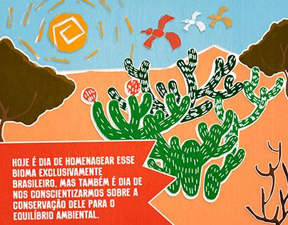 Ilustração - Dia da Caatinga - uso em Mídias Sociais