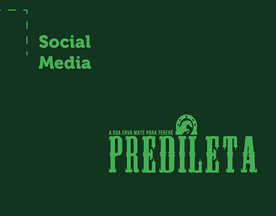 Social Media - Erva Predileta