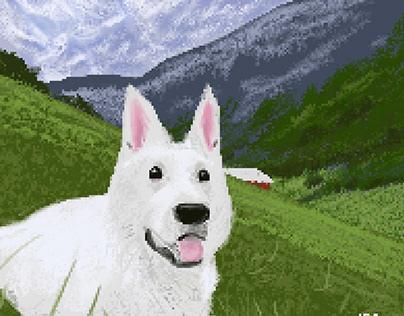 Switzerland Shepherd Pixel