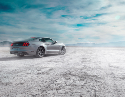 Mustang in the desert