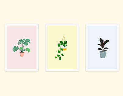Indoor Plant Illustrations