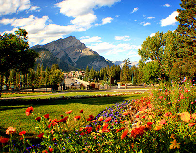 Nature Photography of Banff, Canmore & the Rockies