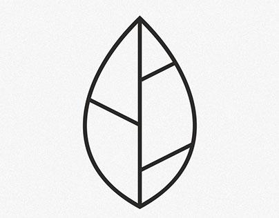 Ролик для дизайн-студии Lite Shop Design