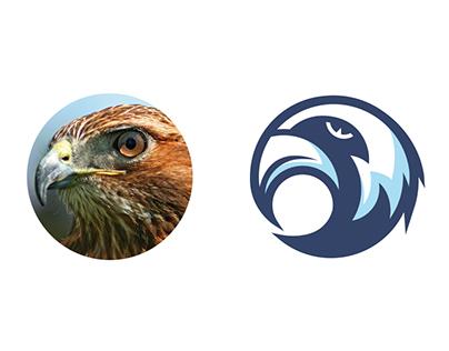 Nighthawk Logo Design