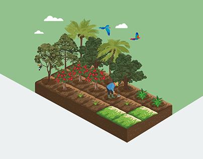 Seminário de Agrofloresta
