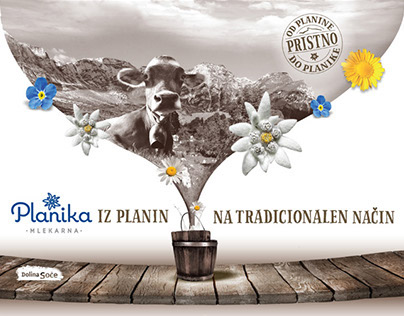 PLANIKA dairy   Concept design, identity, packaging