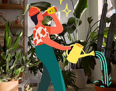 Guayakí Yerba Mate : Come To Life At Home