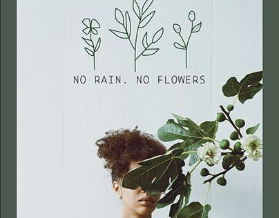 No Rain. No Flowers