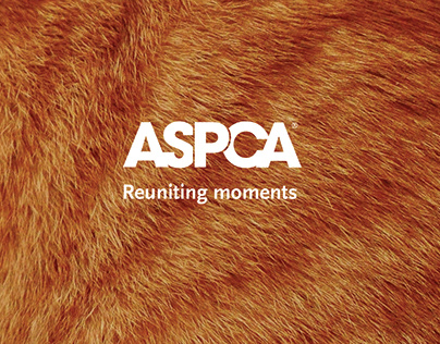 ASPCA: Reuniting moments campaign