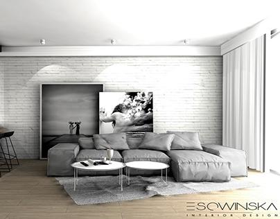 Apartament Katowice 150m2 PL