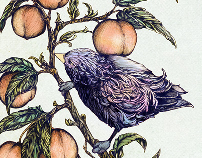Birdie and the Peach