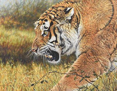 Original Tiger Paintings