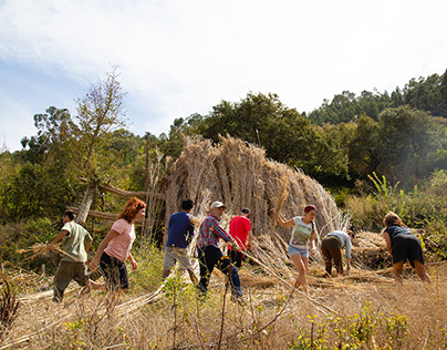 Aldeia do vale, train to permaculture
