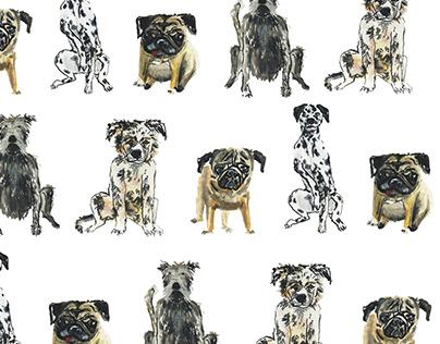 Packaging Design 2018: Doggo Pet Treats