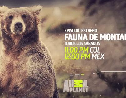 Animal Planet Branding