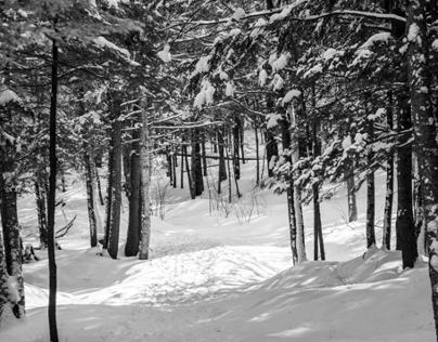Winter - Shefford Mountain