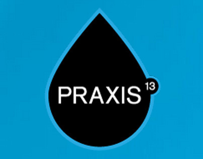 Praxis13 Website