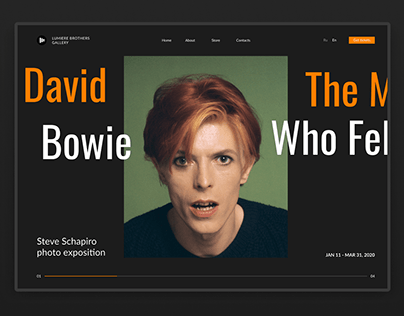 """Landing Page """"David Bowie: The Man Who Fell to Earth"""""""