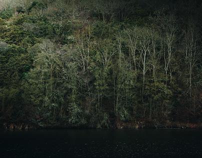 Des rives en lisière